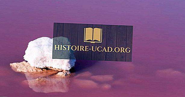 10 rózsaszín tavak a világ minden tájáról