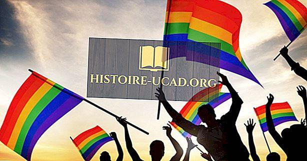 Riigid, kus Gay abielu on seaduslik