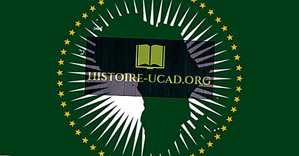Vad betyder färgar och symboler av flaggan av den afrikanska unionen?
