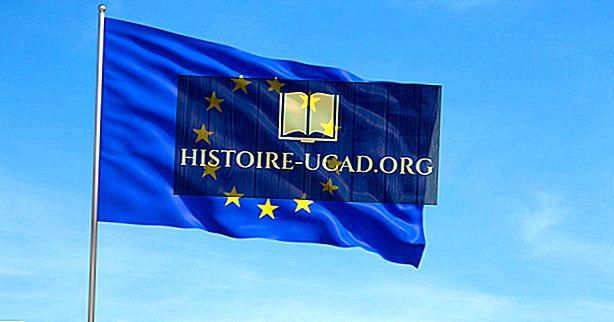 Projekt flagi Unii Europejskiej i zastosowania
