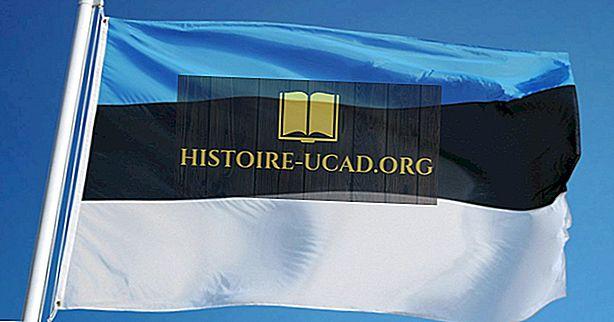 ¿Qué significan los colores y símbolos de la bandera de Estonia?