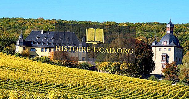 Vanimad veinitootjad maailmas
