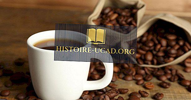 कॉफी का दुनिया का सबसे बड़ा निर्यातक