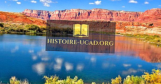 Nevada'daki En Uzun 10 Nehir