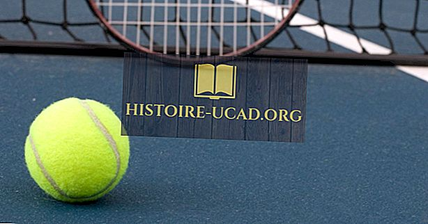 Suosituimmat maat Davis Cupissa