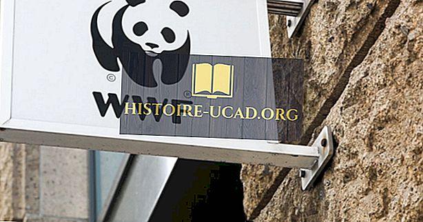 Où se trouve le siège du Fonds mondial pour la nature (WWF)?