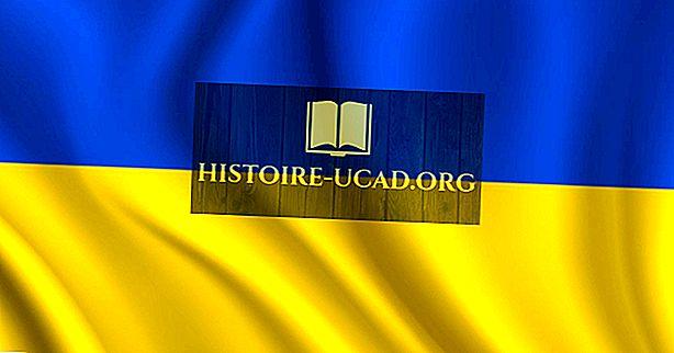 Màu sắc và biểu tượng của lá cờ Ukraine có ý nghĩa gì?