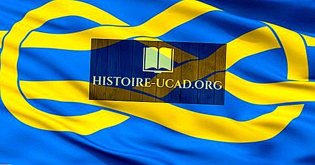 Mis on heraldika?  Mis on veksilloloogia?