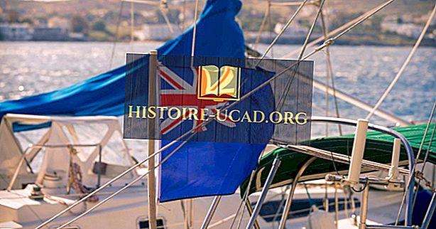 ما هي الأعلام الوطنية التي تستند إلى الراية الزرقاء؟