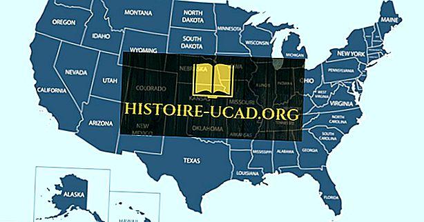 ¿Cuál es el único estado de Estados Unidos sin una línea recta en su frontera?