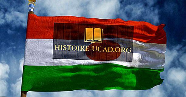 Co znamenají barvy a symboly vlajky Niger?