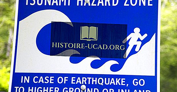 Čo je zemetrasenie tsunami?