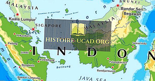 Welke landen grenzen Indonesië?