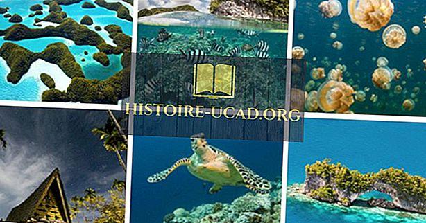 10 Įdomūs faktai apie Palau