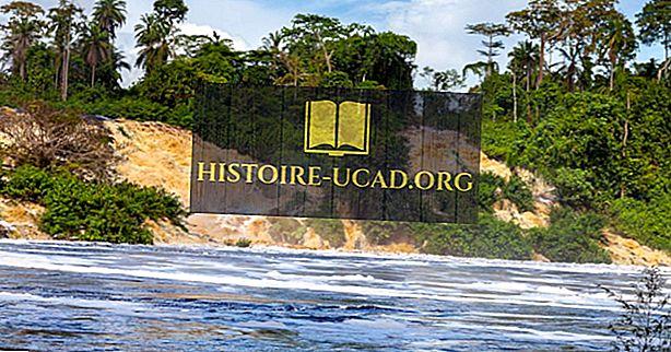 Hangi Ülkelerin Gabon Sınırını?