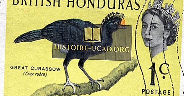 Kura valsts bija pazīstama kā britu Hondurasa?