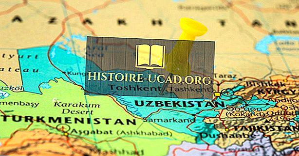 किन देशों की सीमा उजबेकिस्तान है?
