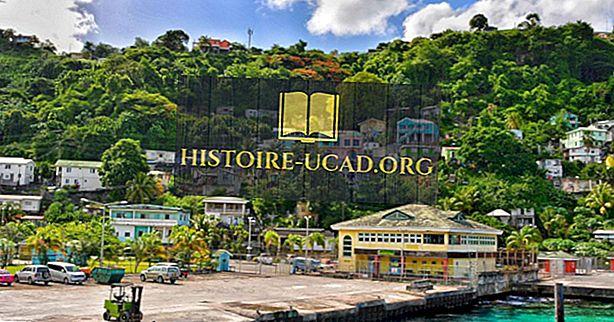 Czym jest stolica Saint Vincent i Grenadyny?