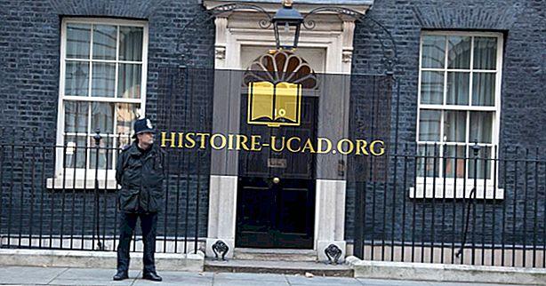 Siapa yang Tinggal di 10 Downing Street?