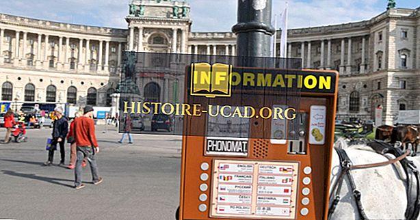Kokiomis kalbomis kalbama Vienoje?