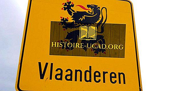Къде е фламандски говорим?