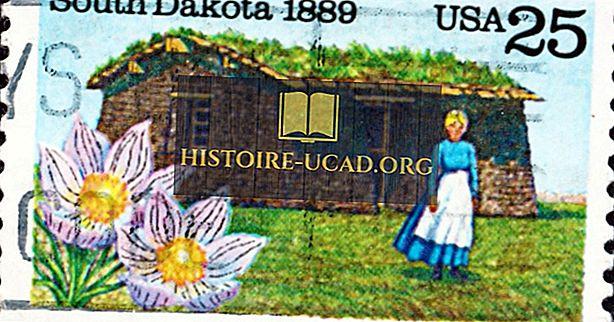 Quelle est la fleur d'état du Dakota du Sud?