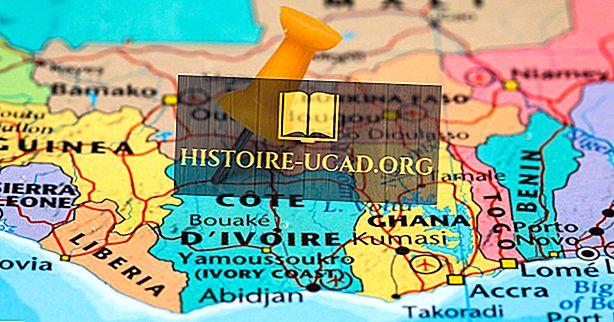 Hvilke land grenser Elfenbenskysten?