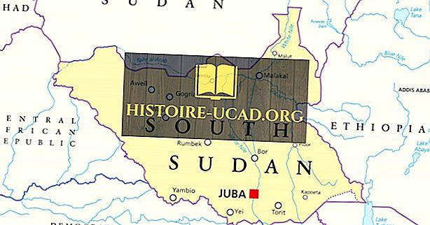 Koje zemlje graniče s Južnim Sudanom?
