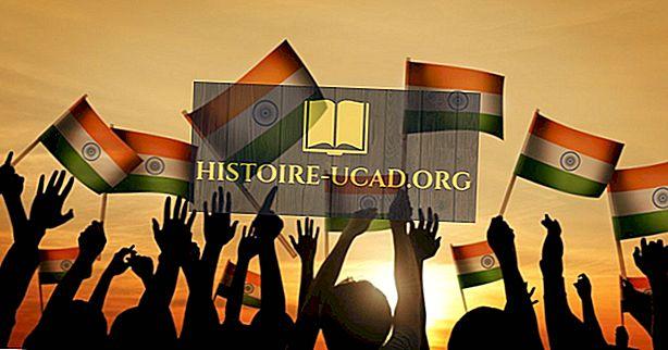 Kur gyvena Indijos diaspora (NRI)?