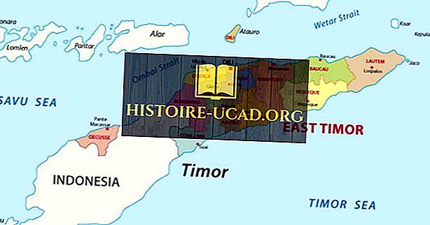 Quais países fazem fronteira com Timor Leste?