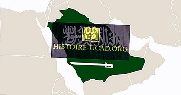 Kas yra didžiausia šalis Arabijos pusiasalyje?