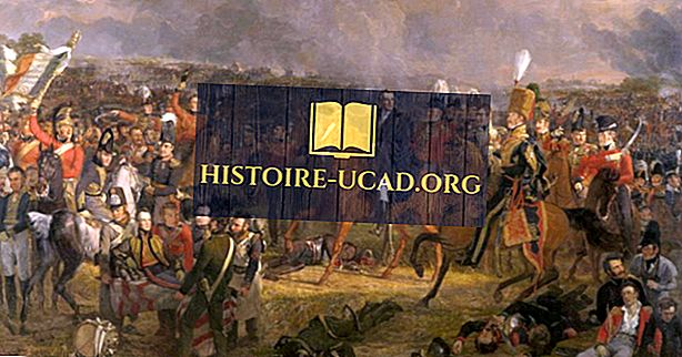 Hvilke lande kæmpede i kampen om Waterloo?