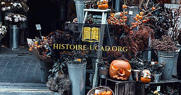 Къде се празнува Хелоуин?