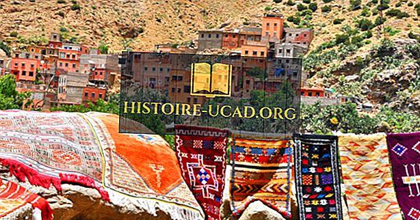 बर्बर भाषा स्पोकन कहाँ है?
