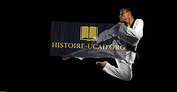D'où vient le Taekwondo?