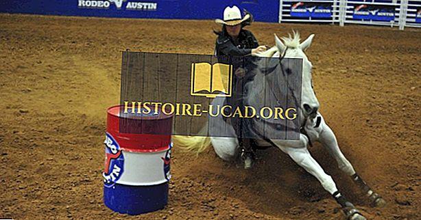 Was ist der Staatssport von Texas?