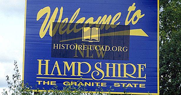 Hangi eyaletler New Hampshire sınırında?