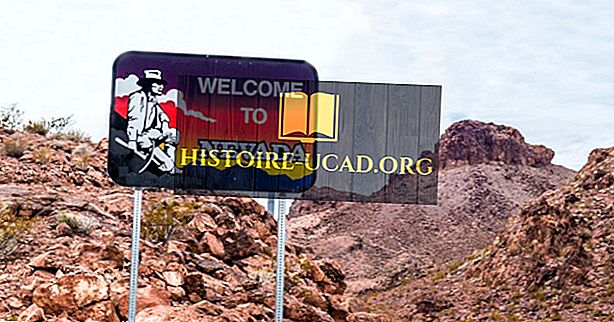 Какие штаты граничат с Невадой?