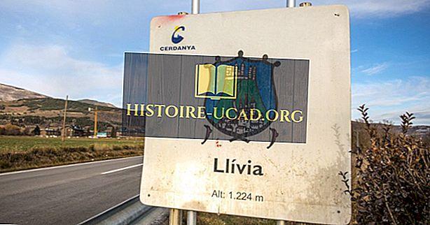 هل ليليا في إسبانيا أم فرنسا؟