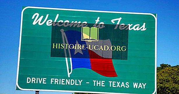 Hvilke stater grenser Texas?