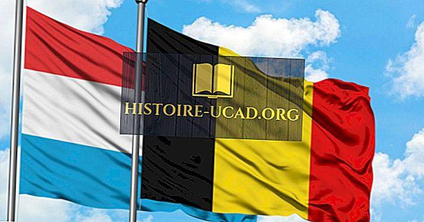 बेल्जियम-लक्जमबर्ग आर्थिक संघ क्या है?