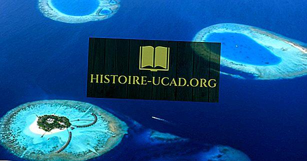 Wat is een atol?
