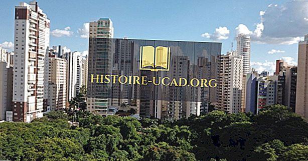 Was ist die Hauptstadt des Bundesstaates Goiás in Brasilien?