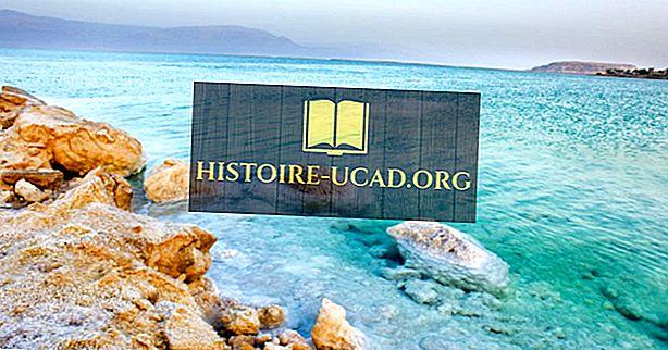 Защо Мъртво море се нарича Мъртво море?