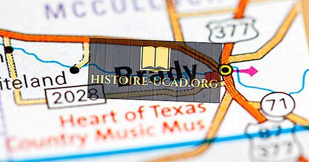 Di manakah Pusat Geografi Texas?