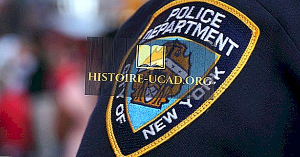 Крупнейшие полицейские управления в США