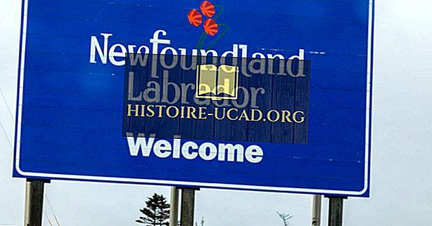 Које провинције граниче са Невфоундландом и Лабрадором?