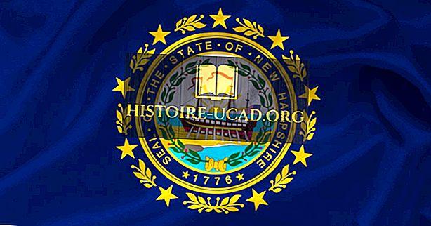 Прапор штату Нью-Гемпшир