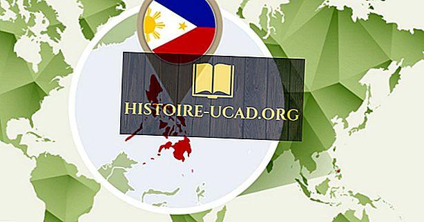Kaj je celina v Filipinih?