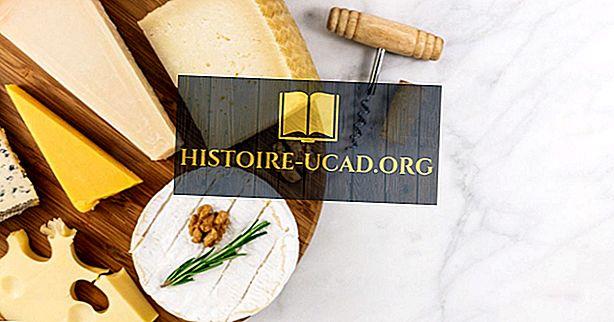 Landen die de meeste kaas eten